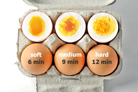 Boiled Egg Stages
